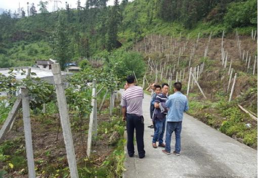 擦罗南桠村节水灌溉完工