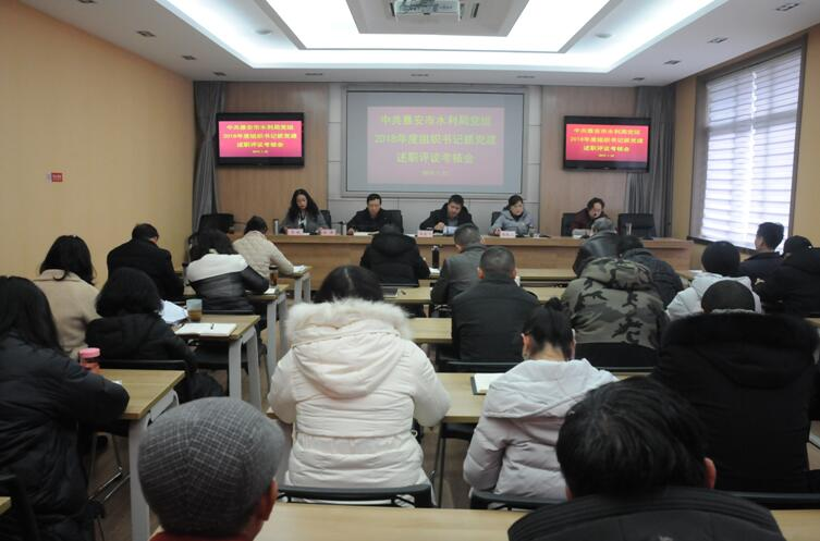 雅安市水利局召开2018年度党组织书记抓党建述职评议考核会