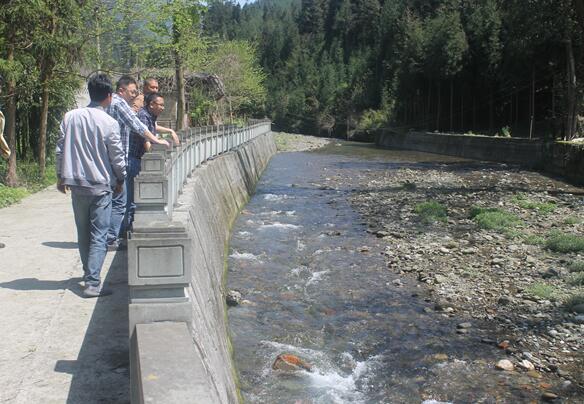 芦山县水务局开展玉溪河、太平河固体废物排查工作